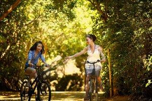 Sustainable Bike Tour